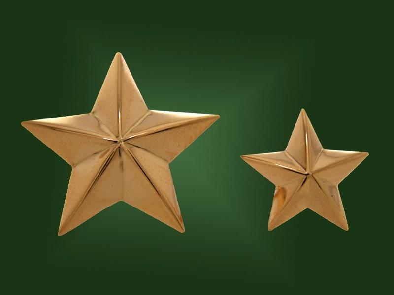Золотая звёздочка З-002